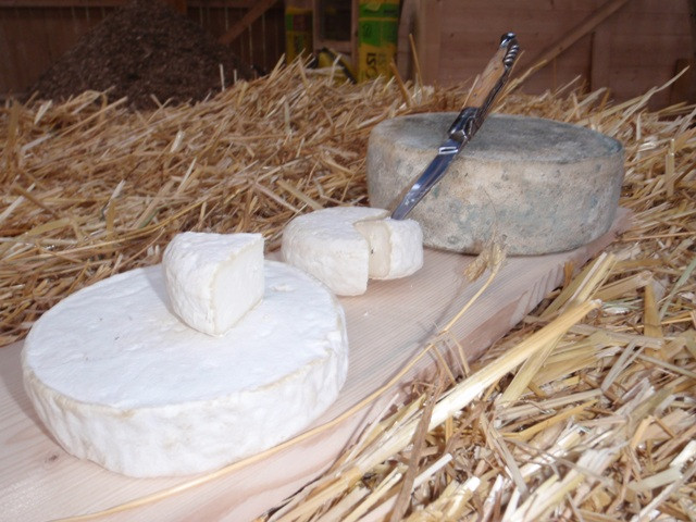 fromages-1470